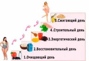 dieta_5_stupeney
