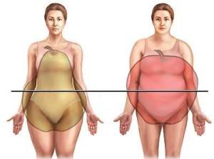 висцеральный жир-3